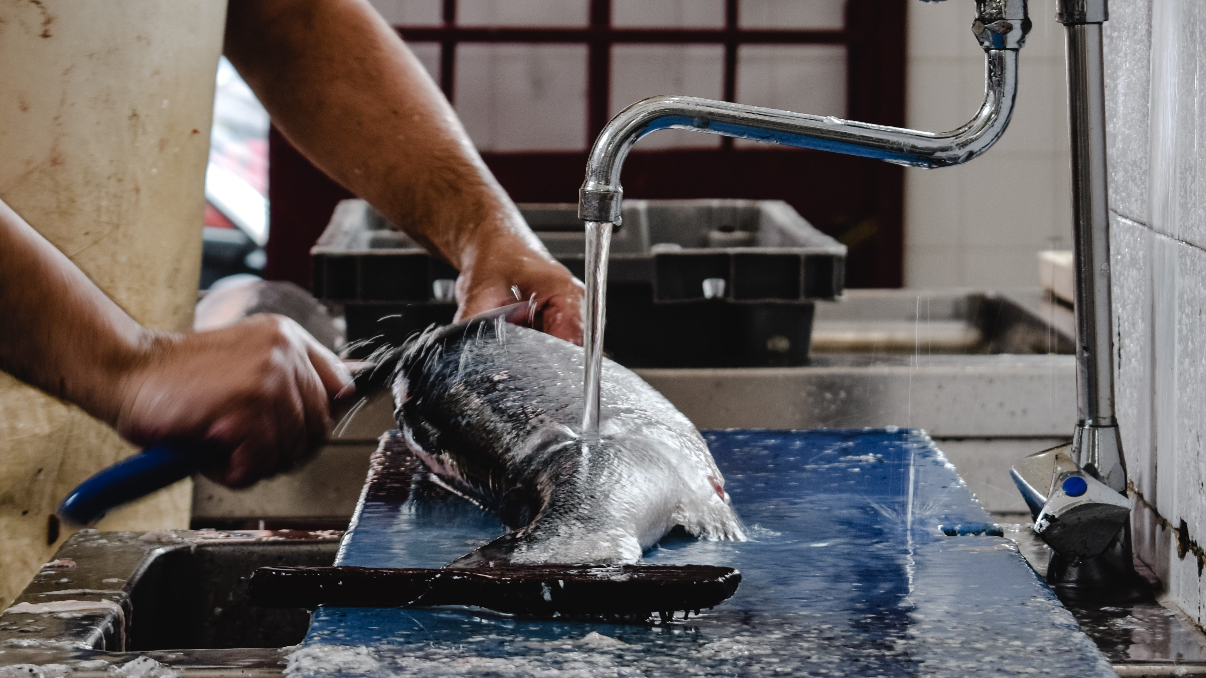 An image of a fishmonger descaling a fish with a special knife.